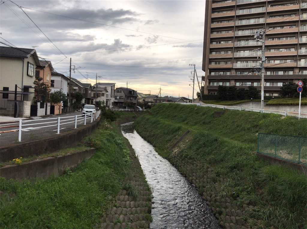 f:id:yokohamamiuken:20191108124910j:image