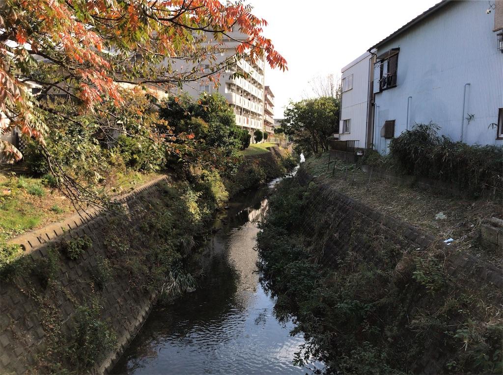 f:id:yokohamamiuken:20191114135653j:image