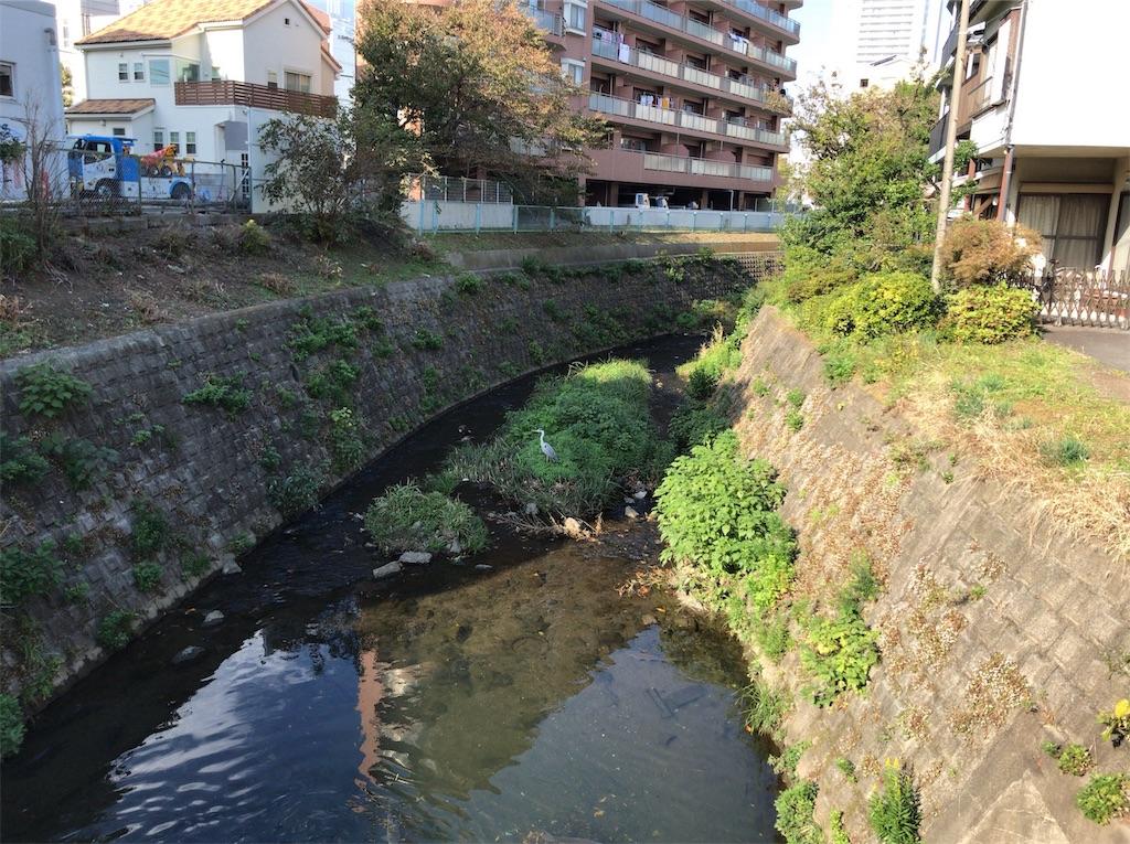 f:id:yokohamamiuken:20191114135748j:image