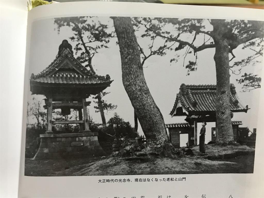 f:id:yokohamamiuken:20200129225819j:image