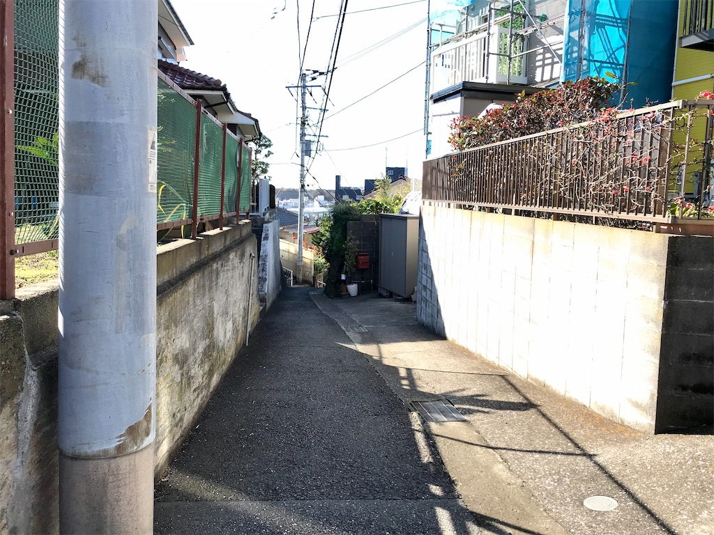 f:id:yokohamamiuken:20200130214842j:image
