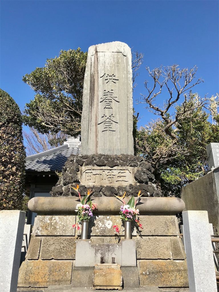 f:id:yokohamamiuken:20200130215827j:image