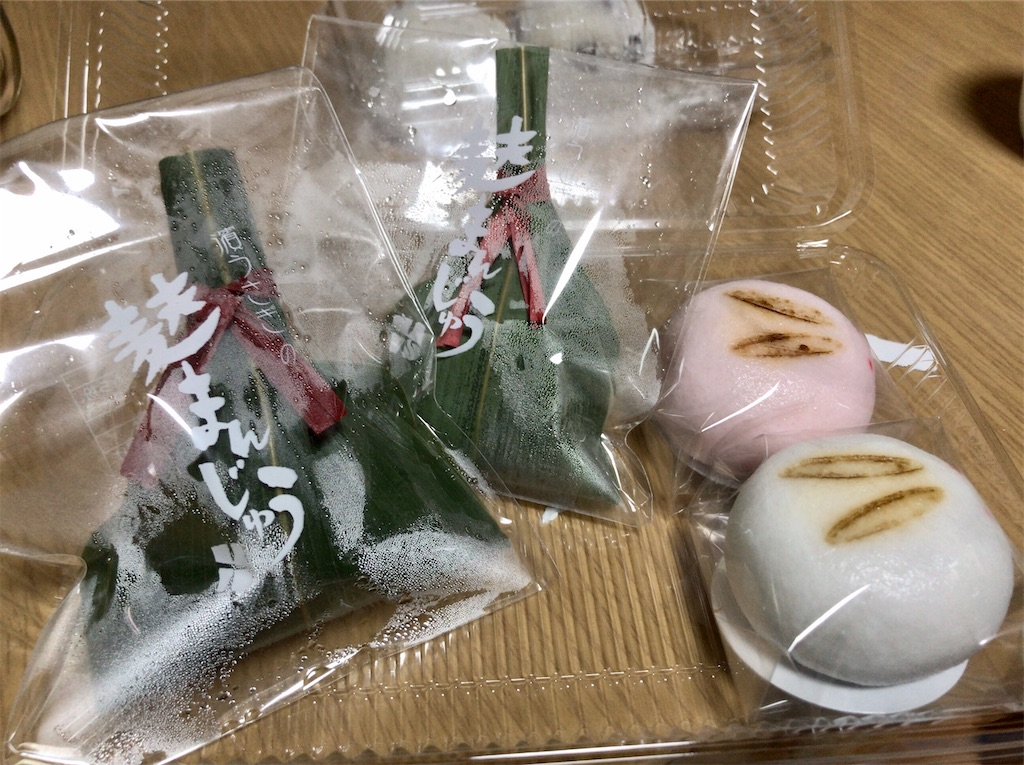 f:id:yokohamamiuken:20200207230756j:image