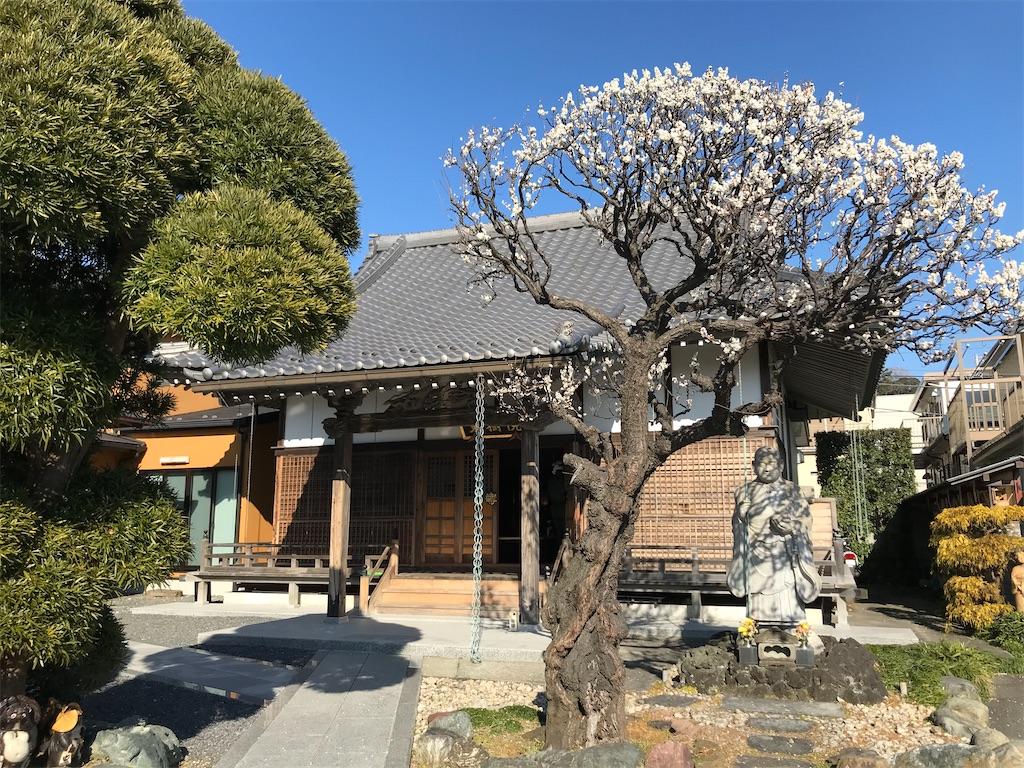 f:id:yokohamamiuken:20200210154200j:image