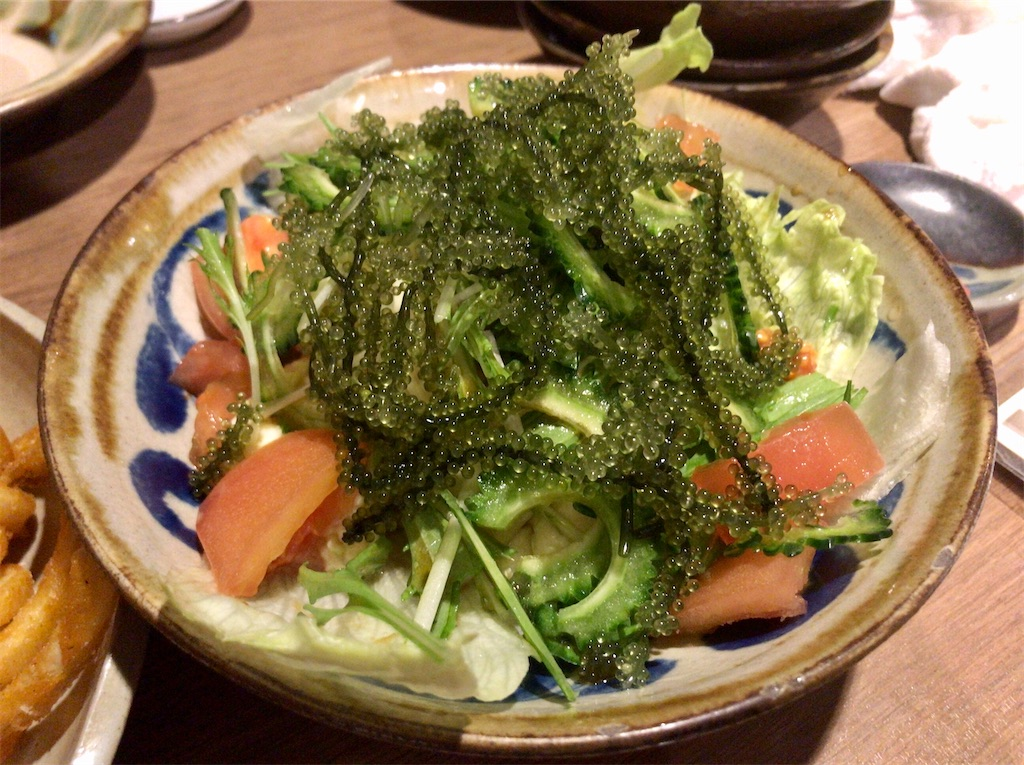 f:id:yokohamamiuken:20200224215507j:image