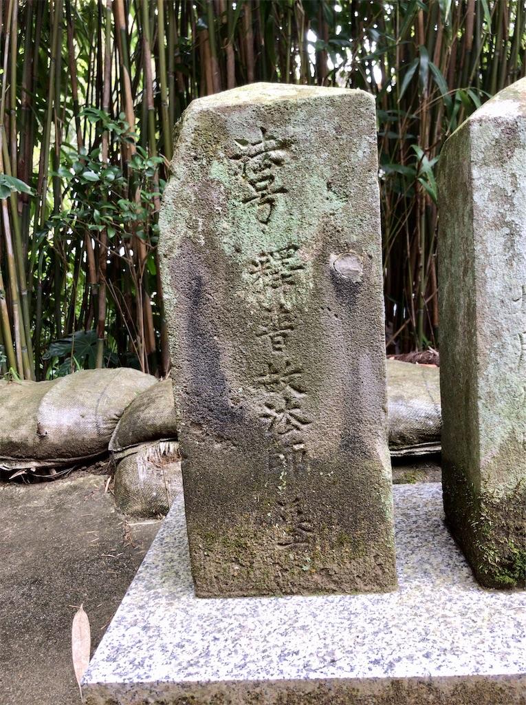 f:id:yokohamamiuken:20200309215429j:image