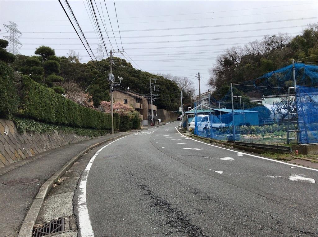 f:id:yokohamamiuken:20200309224054j:image
