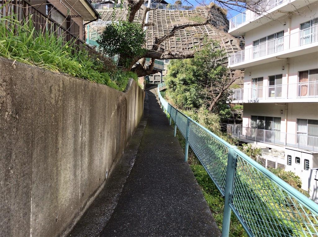 f:id:yokohamamiuken:20200309230103j:image
