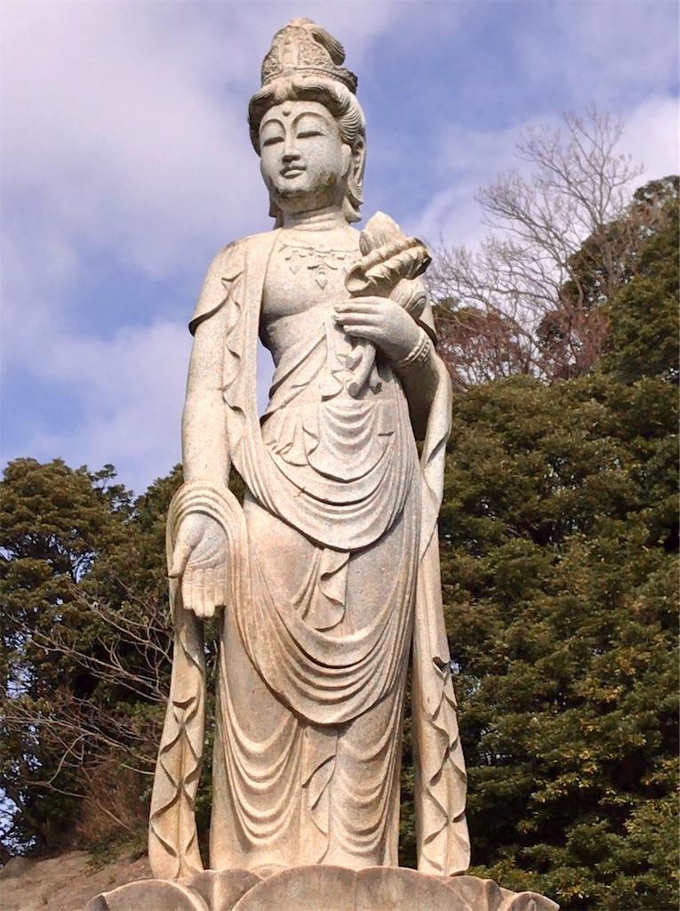f:id:yokohamamiuken:20200309230647j:image