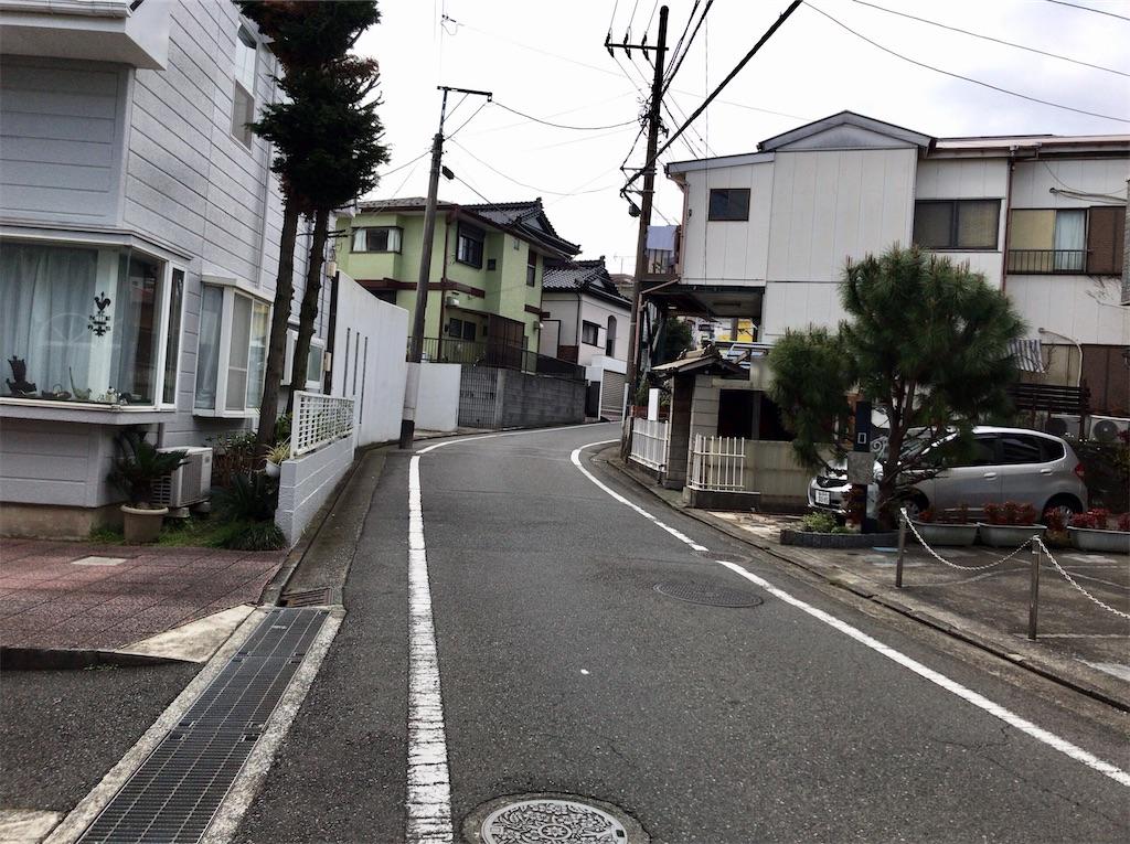 f:id:yokohamamiuken:20200309230918j:image