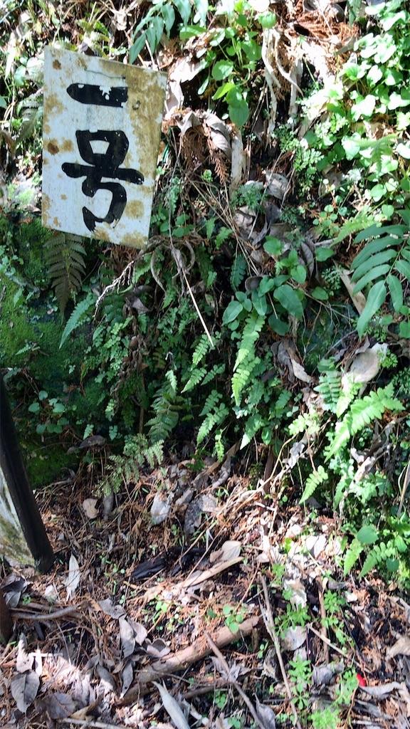 f:id:yokohamamiuken:20200317192953j:image