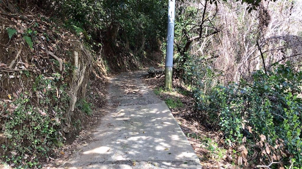 f:id:yokohamamiuken:20200317193004j:image