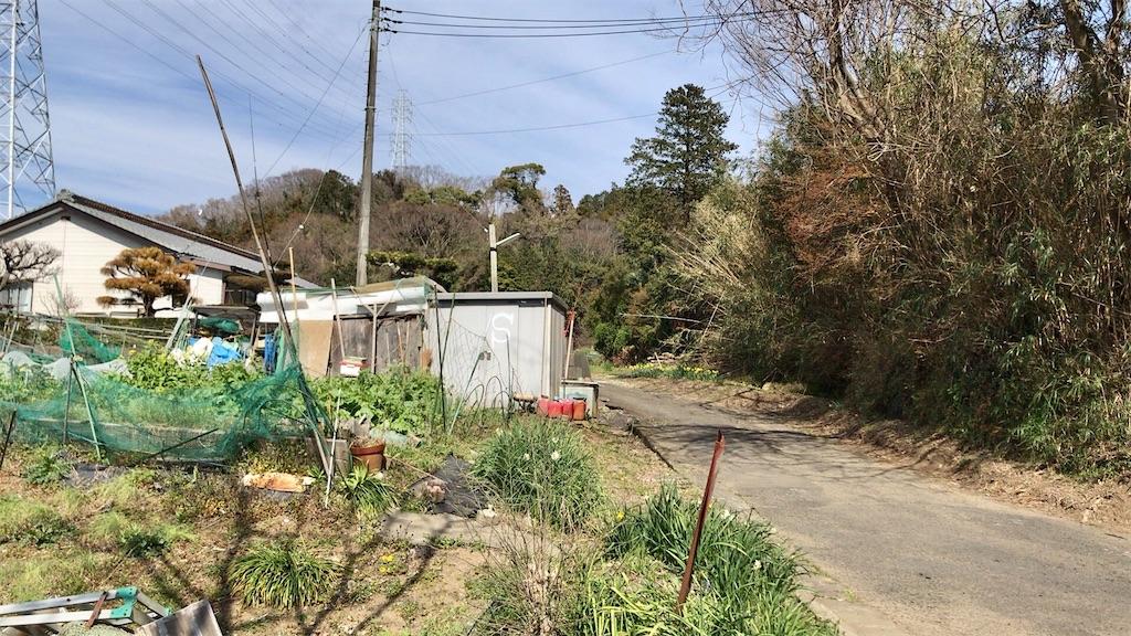 f:id:yokohamamiuken:20200317193631j:image