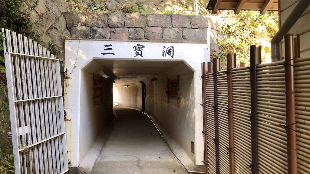 f:id:yokohamamiuken:20200317193842j:image