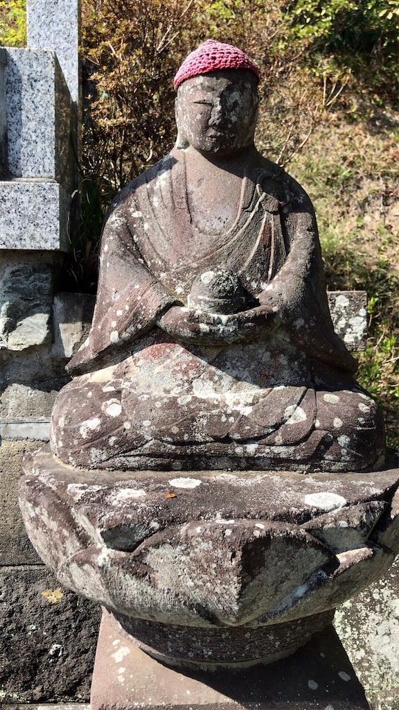 f:id:yokohamamiuken:20200317193955j:image