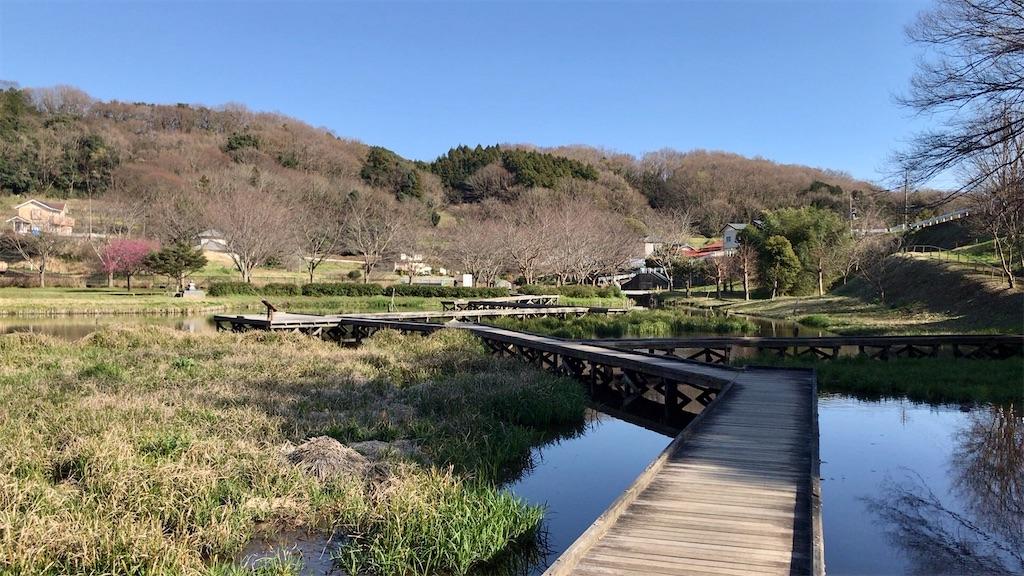 f:id:yokohamamiuken:20200317194432j:image