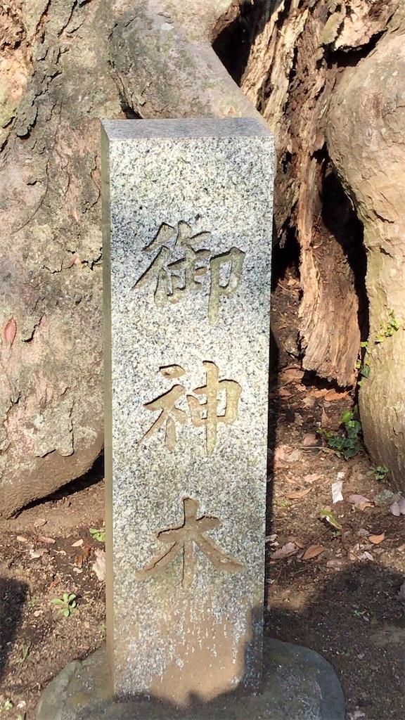 f:id:yokohamamiuken:20200317194553j:image