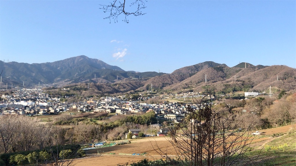f:id:yokohamamiuken:20200317194843j:image