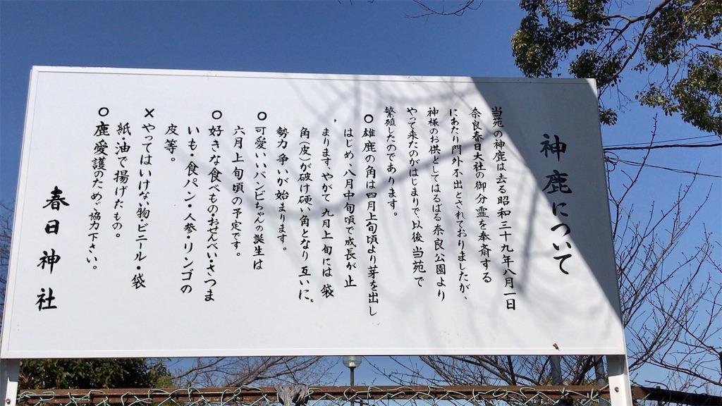 f:id:yokohamamiuken:20200318123207j:image