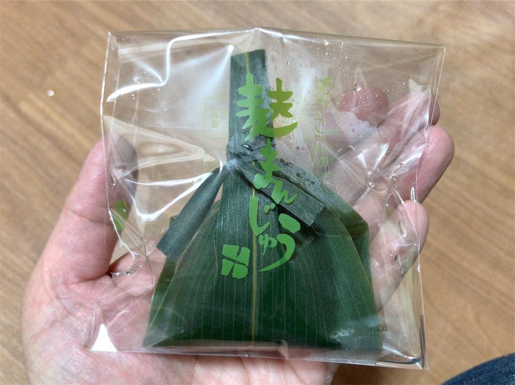 f:id:yokohamamiuken:20200330122123j:image