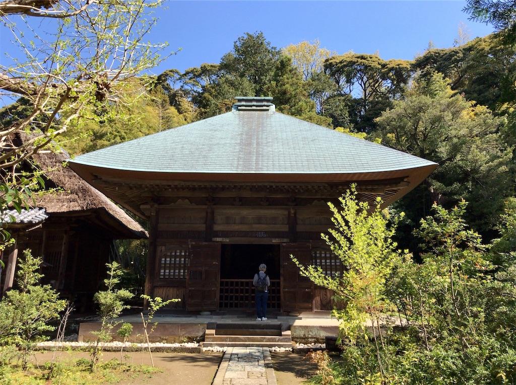 f:id:yokohamamiuken:20200414211220j:image
