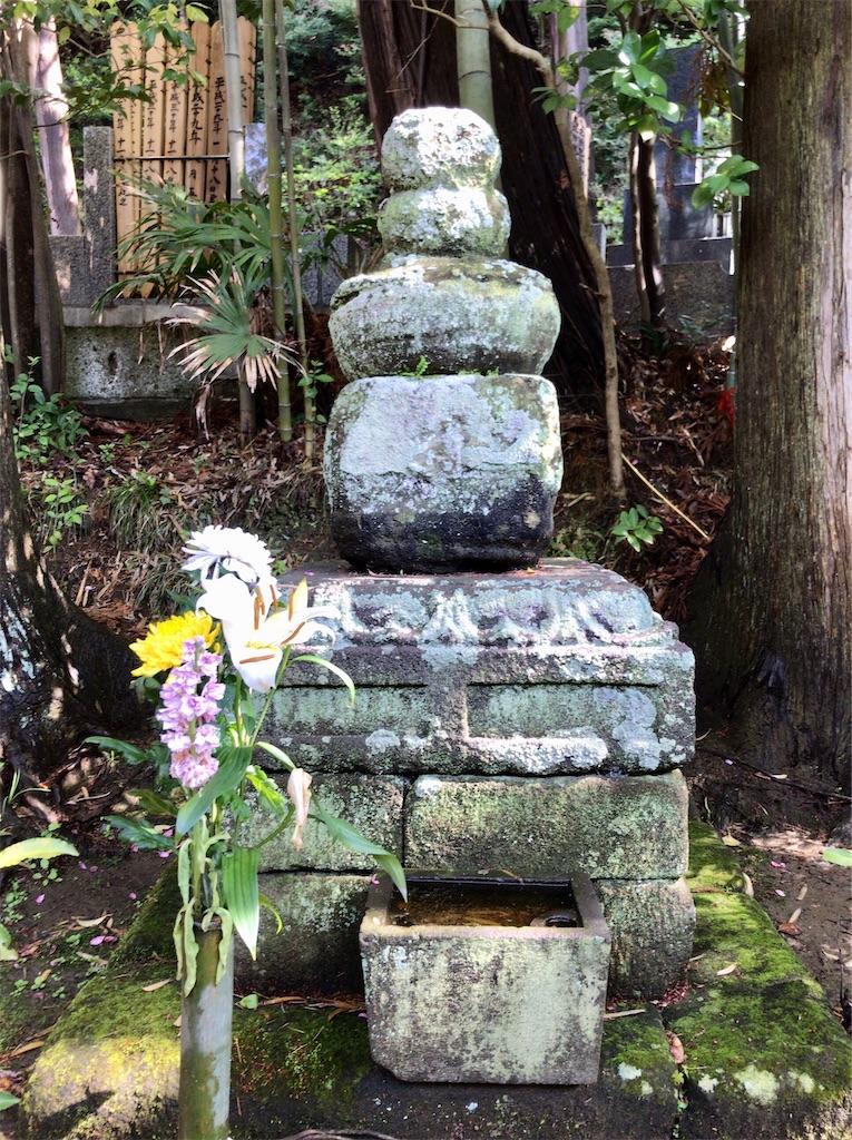 f:id:yokohamamiuken:20200414211319j:image