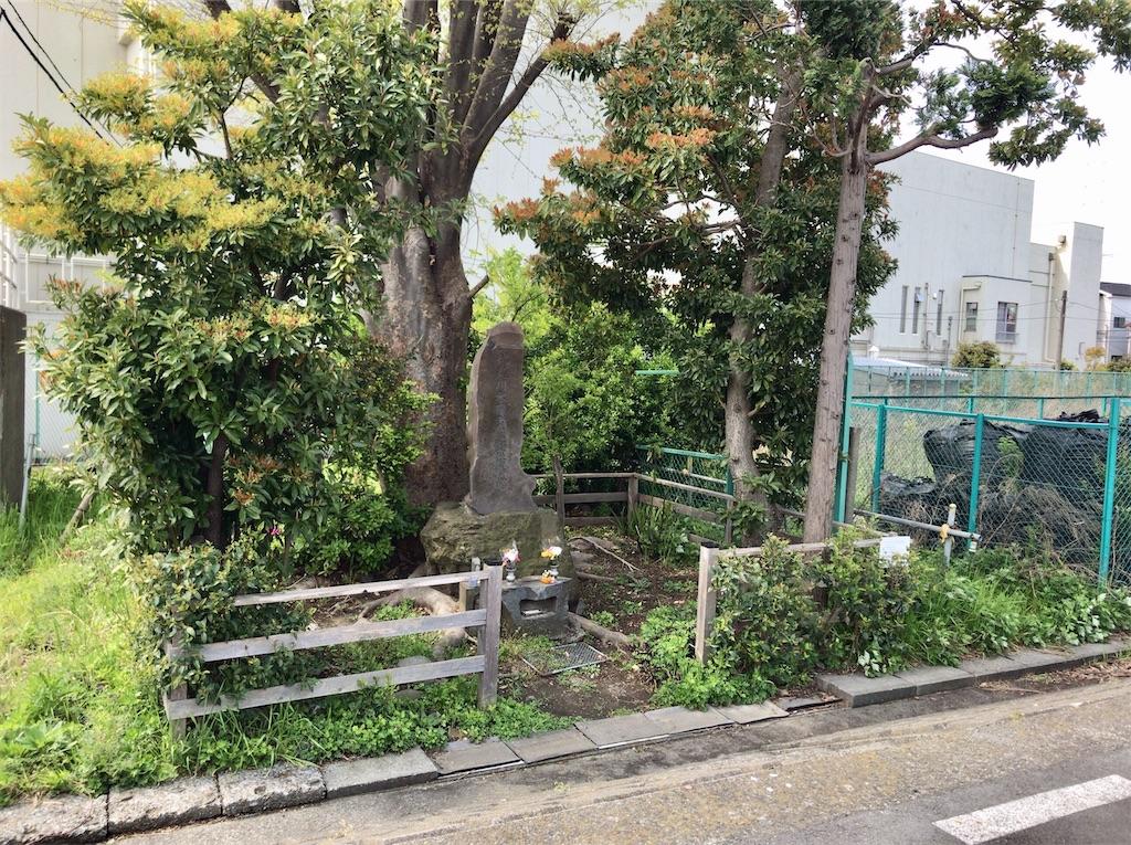 f:id:yokohamamiuken:20200416123005j:image