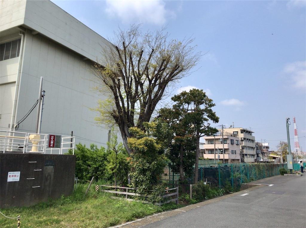 f:id:yokohamamiuken:20200416123020j:image