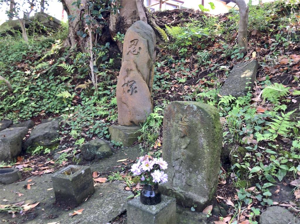 f:id:yokohamamiuken:20200518064600j:image