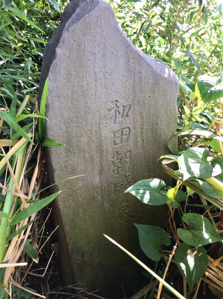 f:id:yokohamamiuken:20200518091104j:image