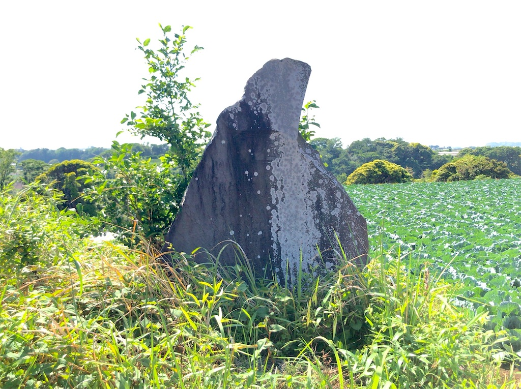 f:id:yokohamamiuken:20200518091120j:image