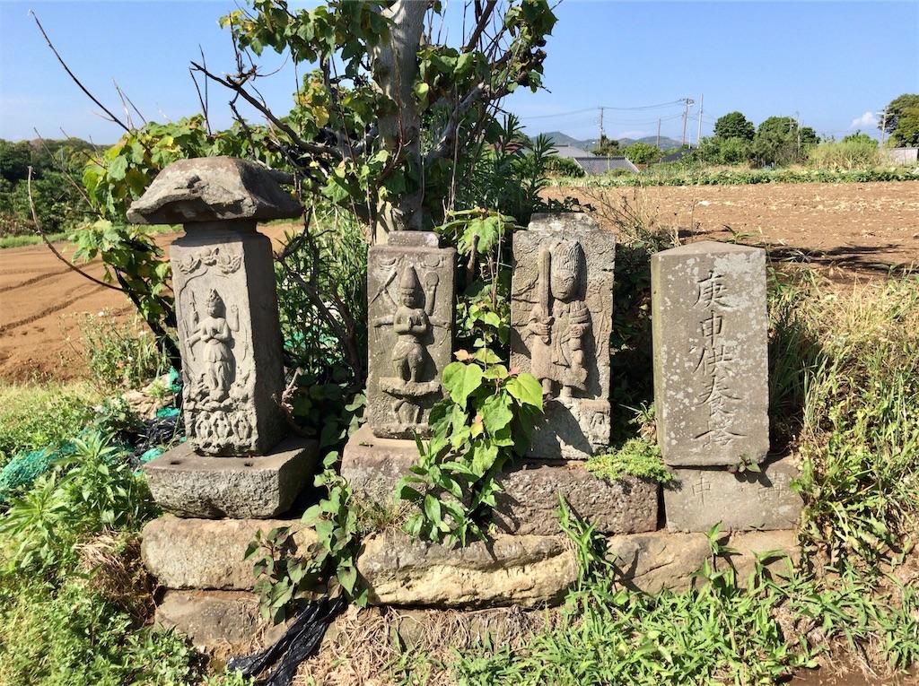 f:id:yokohamamiuken:20200518091449j:image