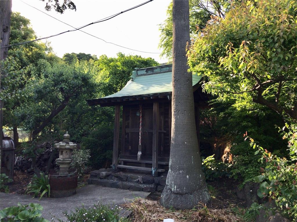 f:id:yokohamamiuken:20200518092255j:image