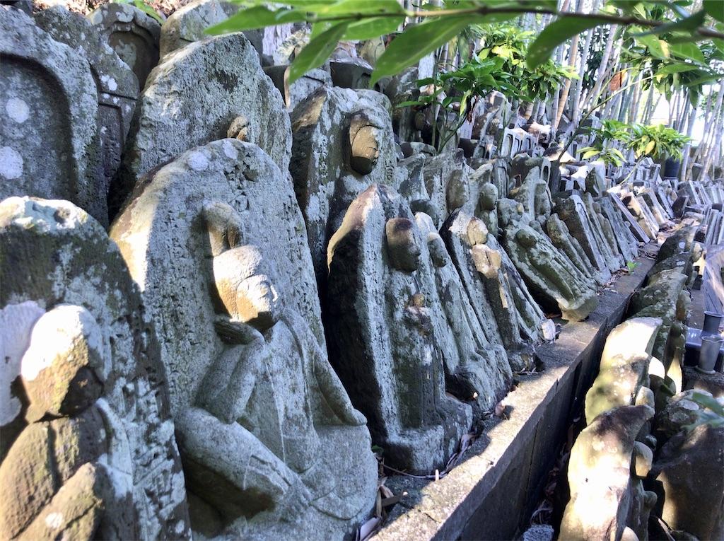 f:id:yokohamamiuken:20200518092449j:image