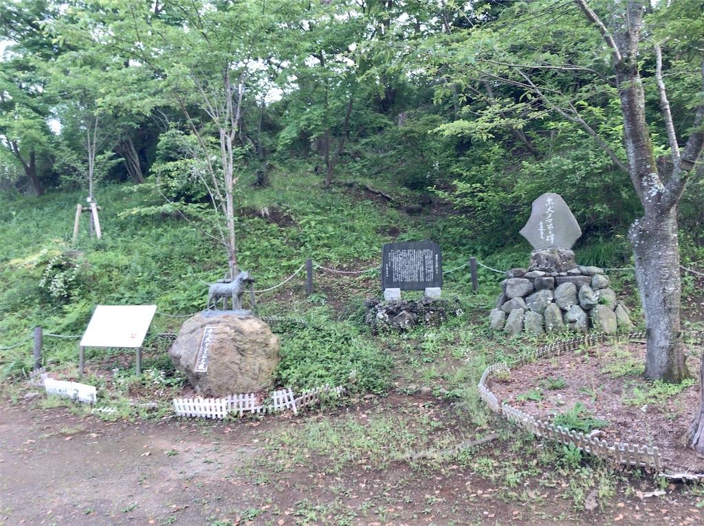 f:id:yokohamamiuken:20200518092826j:image