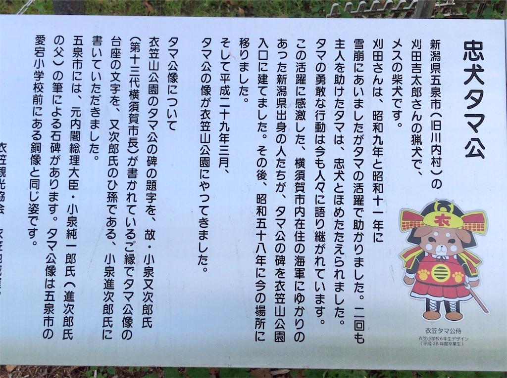 f:id:yokohamamiuken:20200518092854j:image