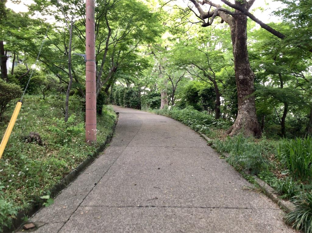 f:id:yokohamamiuken:20200518093044j:image