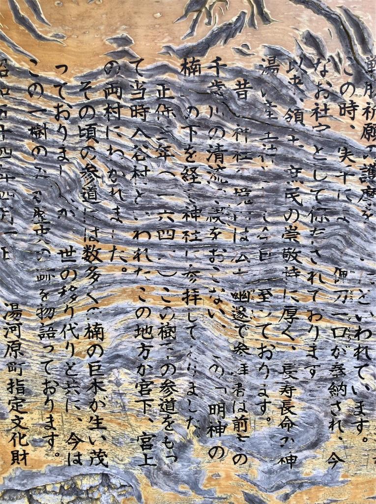 f:id:yokohamamiuken:20200521202601j:image