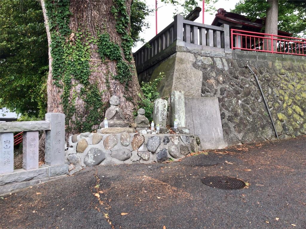 f:id:yokohamamiuken:20200521202945j:image