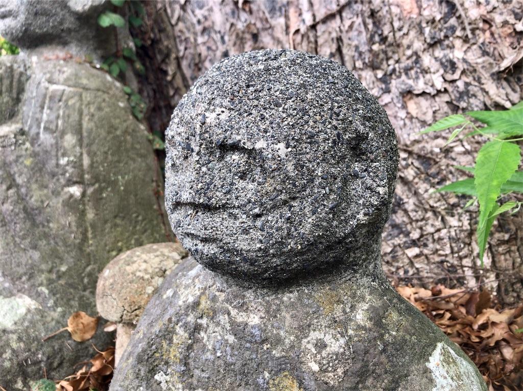 f:id:yokohamamiuken:20200521202948j:image