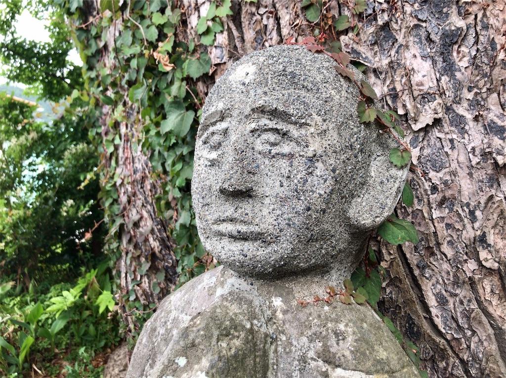 f:id:yokohamamiuken:20200521202956j:image