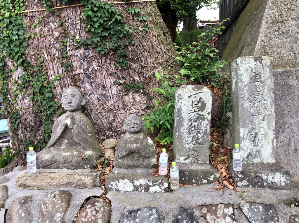 f:id:yokohamamiuken:20200521203009j:image