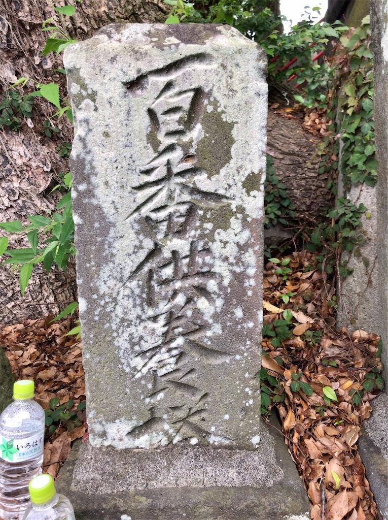 f:id:yokohamamiuken:20200521203020j:image