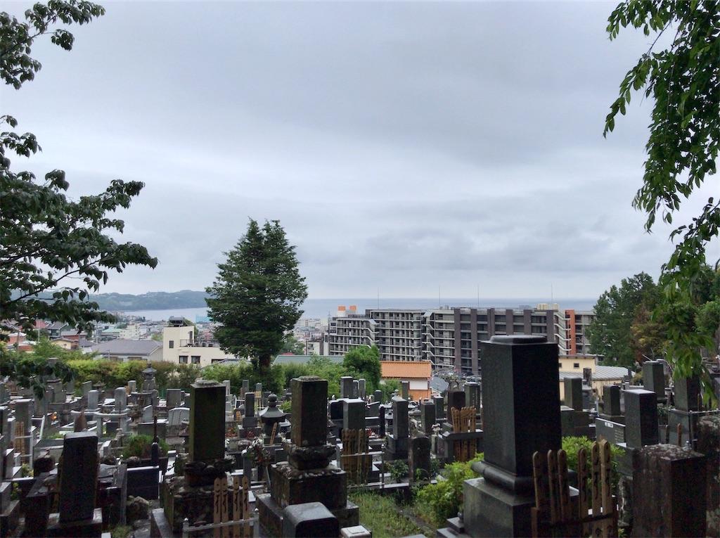f:id:yokohamamiuken:20200521203451j:image