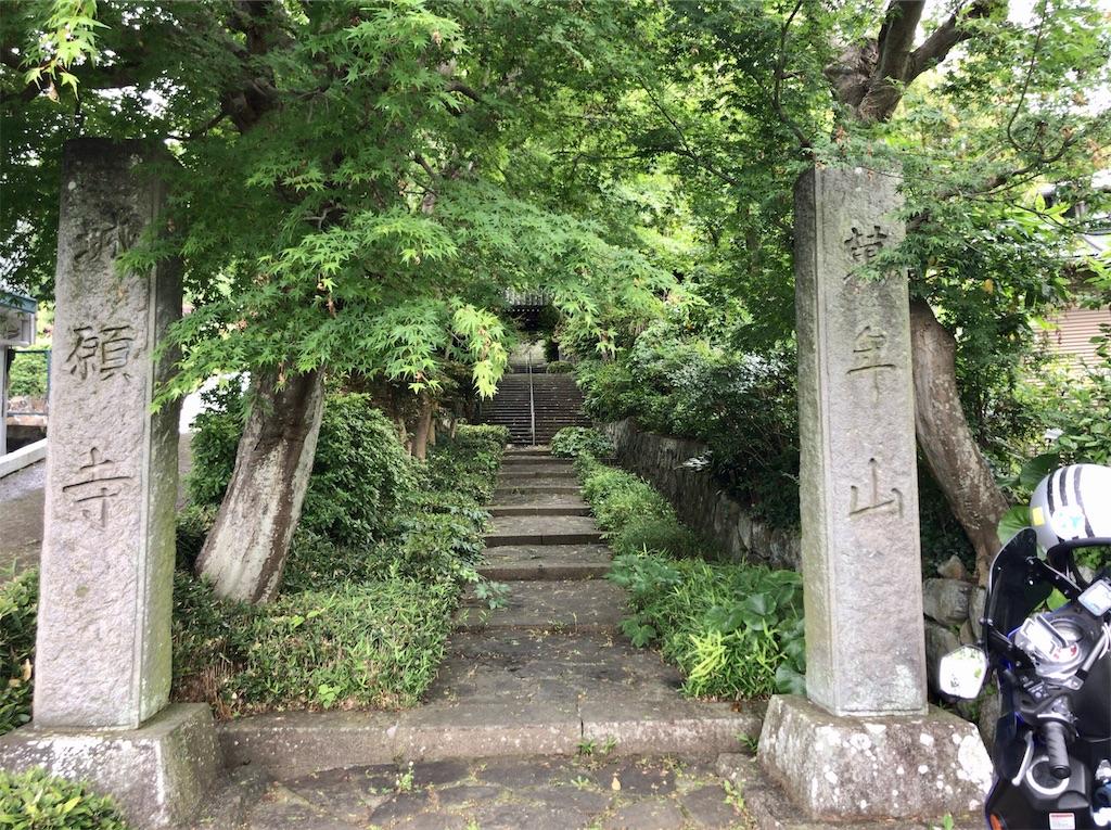 f:id:yokohamamiuken:20200521203635j:image