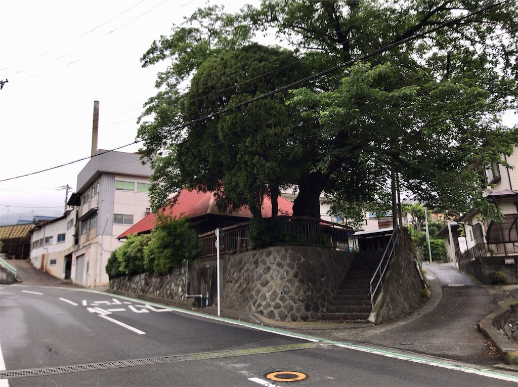 f:id:yokohamamiuken:20200521204617j:image