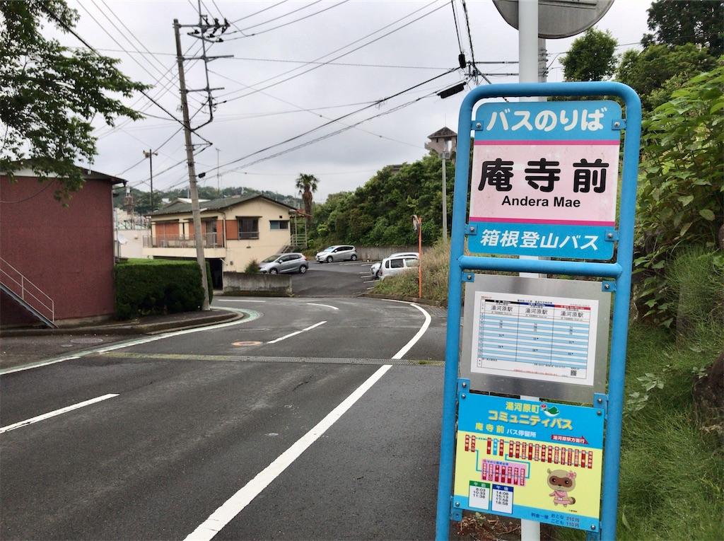 f:id:yokohamamiuken:20200521204703j:image