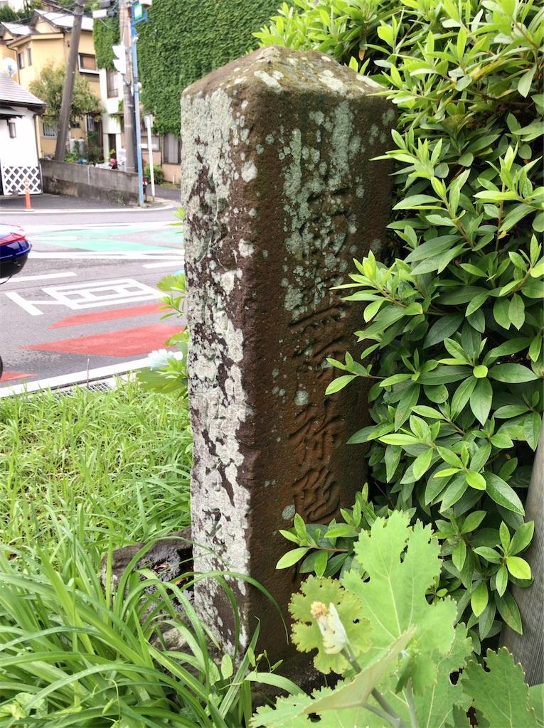 f:id:yokohamamiuken:20200521204743j:image