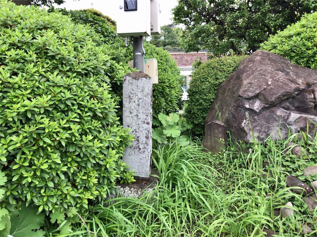 f:id:yokohamamiuken:20200521204753j:image