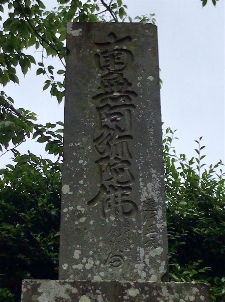 f:id:yokohamamiuken:20200521204945j:image